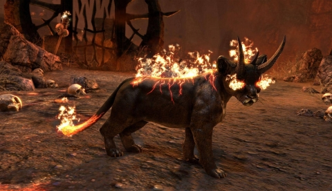 Детеныш огненного охотника из ночных кошмаров