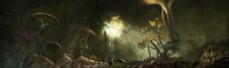 Грибной грот (Fungal Grotto)