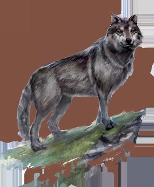 Эбонхардский Пакт Wolf_img