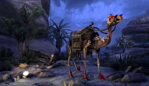 Скелет верблюда