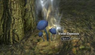 Violet Corprinus