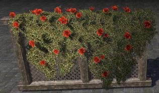 Свадебная Цветочная Изгородь