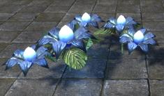 Свадебные Цветы, Синие