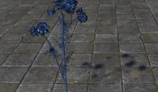 Цветок Пустоты
