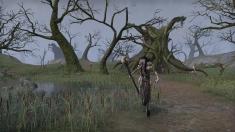 Творческое изображение - Ведьма Хай Рока