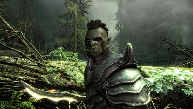 В Skyrim я играл орком с огромным и мощным мечом